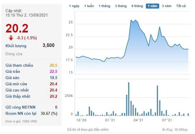 Nhựa Đồng Nai (DNP) chào bán gần 11 triệu cổ phiếu cho cổ đông với giá 20.698 đồng/cp - Ảnh 2.
