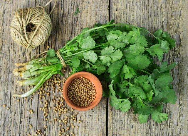5 loại rau củ tuy khó ăn nhưng rất tốt cho sức khỏe: Vừa giàu vitamin, vừa phòng chống ung thư, chuyên gia sức khỏe khuyên nên sử dụng mỗi ngày - Ảnh 2.