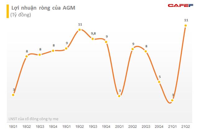 Angimex (AGM) bị HoSE nhắc nhở về việc chi trả cổ tức năm 2020 - Ảnh 1.