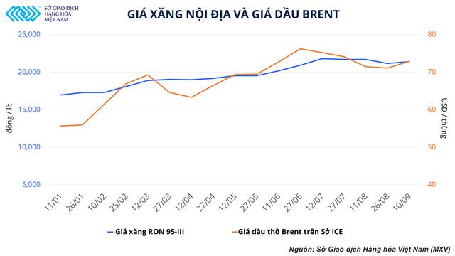 Giá xăng biến động mạnh và bài toán bảo hiểm rủi ro đối với doanh nghiệp Việt Nam - Ảnh 2.