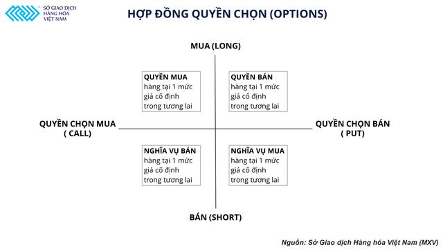 Giá xăng biến động mạnh và bài toán bảo hiểm rủi ro đối với doanh nghiệp Việt Nam - Ảnh 3.