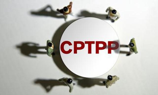 Tại sao Trung Quốc lại xin gia nhập CPTPP và các nước thành viên được gì, mất gì với sự hiện diện của Bắc Kinh? - Ảnh 3.