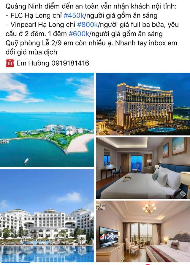 Nhiều địa phương rục rịch mở cửa, khách Việt ồ ạt lên mạng săn voucher du lịch giá siêu rẻ - Ảnh 2.