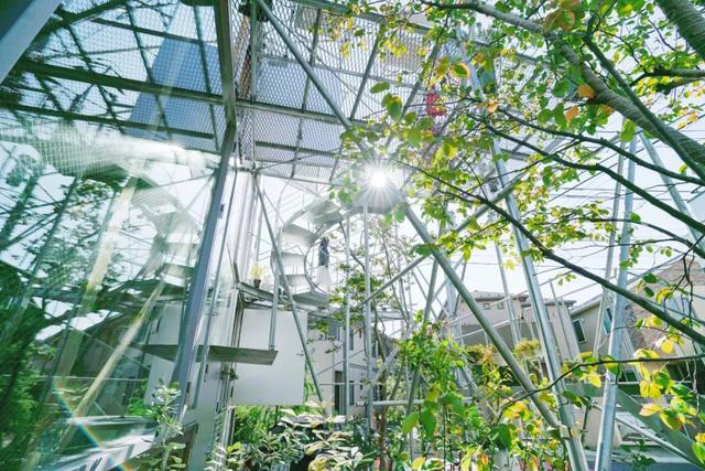 Gia đình ba thế hệ thiết kế ngôi nhà đặc biệt chỉ toàn ánh sáng và cây xanh ở Nhật Bản - Ảnh 3.