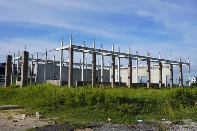 Dự án 670 tỉ đồng đắp chiếu, thành bãi chăn bò  - Ảnh 3.