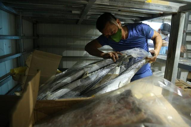 Hàng ngàn tấn hải sản nằm kho lạnh vì dịch, chủ hàng lo phá sản vì phải bù lỗ tiền điện - Ảnh 8.
