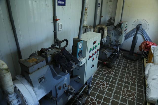 Hàng ngàn tấn hải sản nằm kho lạnh vì dịch, chủ hàng lo phá sản vì phải bù lỗ tiền điện - Ảnh 9.