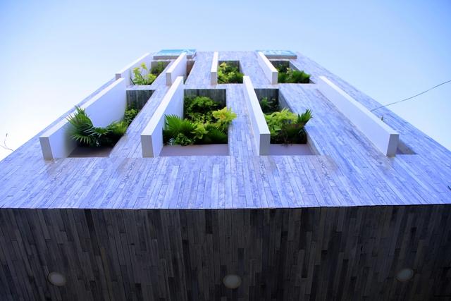 Công viên ngoài trời trên sân thượng ngôi nhà 700 m2 ở Đà Nẵng - Ảnh 2.