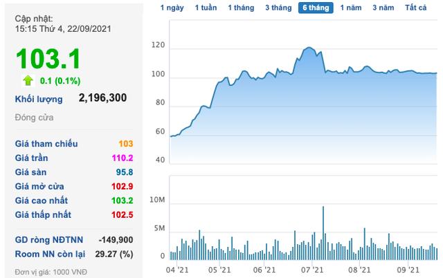 Novaland (NVL): Tiếp tục dùng cổ phiếu để đảm bảo cho khoản huy động 500 tỷ trái phiếu - Ảnh 1.