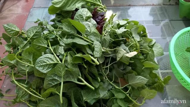 Khoảng sân thượng chỉ 15m² nhưng đủ các loại rau xanh tốt tươi không lo thiếu thực phẩm mùa dịch ở Hà Nội - Ảnh 12.
