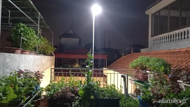 Khoảng sân thượng chỉ 15m² nhưng đủ các loại rau xanh tốt tươi không lo thiếu thực phẩm mùa dịch ở Hà Nội - Ảnh 14.
