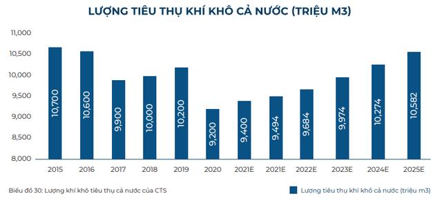 Nhu cầu tiêu thụ khí tăng mạnh trong dài hạn, cổ phiếu nào là tâm điểm đầu tư? - Ảnh 4.
