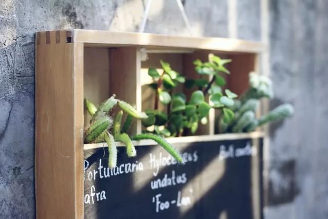 Cô gái trẻ bỏ phố về quê, sống những ngày an yên trong nhà thuê cùng khu vườn đủ loại rau trái - Ảnh 17.