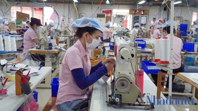 Doanh nghiệp FDI đề nghị Đà Nẵng tháo gỡ việc lưu thông, nhập cảnh, phủ xanh vaccine - Ảnh 1.