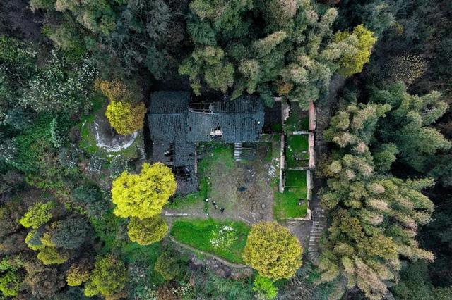 Ngôi nhà vườn khiến ai cũng trầm trồ của nữ biên tập viên rời phố, cùng chồng và bố mẹ về quê sống cuộc đời an nhàn - Ảnh 20.