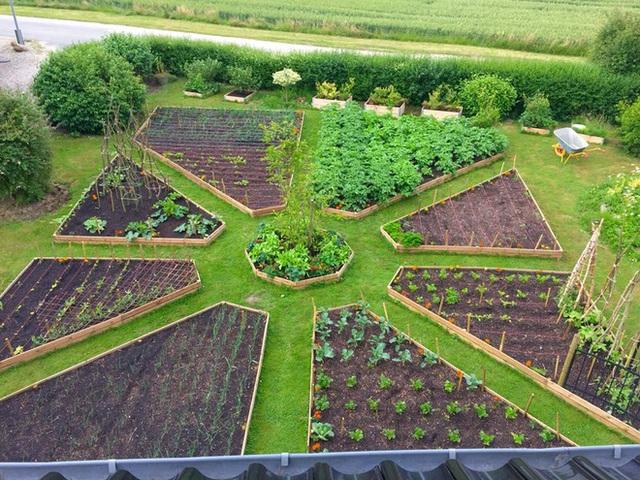 Khu vườn cổ tích của hai chàng trai có cùng sở thích trồng rau, nuôi gà - Ảnh 9.