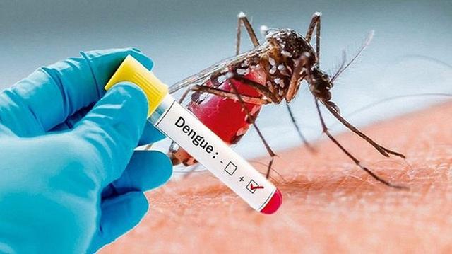 Thời tiết giao mùa dễ bùng dịch sốt xuất huyết, hãy dắt túi ngay 6 bài thuốc điều trị cực hiệu quả phòng khi dùng đến - Ảnh 1.