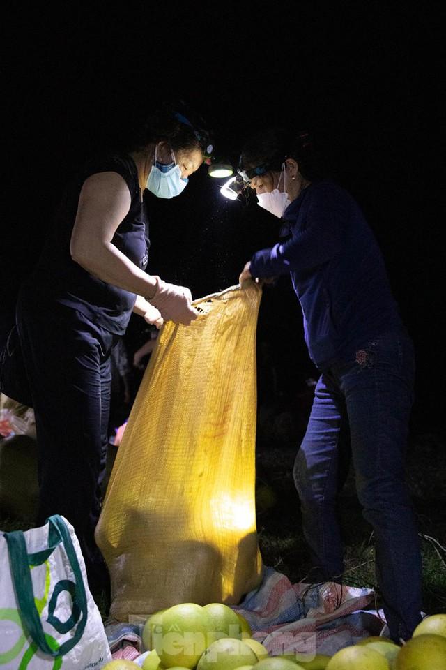 Đội đèn xuyên đêm bán bưởi Phúc Trạch đặc sản  - Ảnh 12.