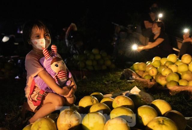 Đội đèn xuyên đêm bán bưởi Phúc Trạch đặc sản  - Ảnh 13.