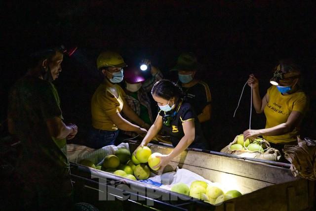Đội đèn xuyên đêm bán bưởi Phúc Trạch đặc sản  - Ảnh 3.