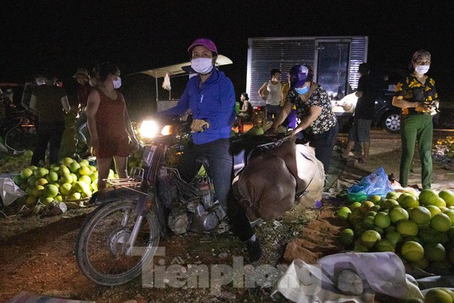 Đội đèn xuyên đêm bán bưởi Phúc Trạch đặc sản  - Ảnh 5.