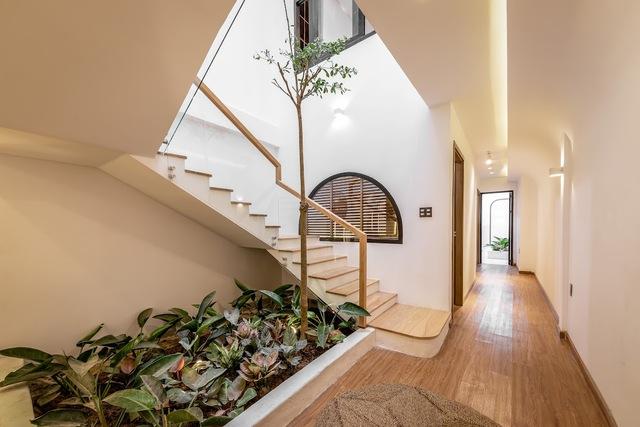 Gia chủ chi gần 2 tỷ biến căn nhà phố gần 200m2 thành không gian sống xanh mướt với sân vườn giữa nhà - Ảnh 1.