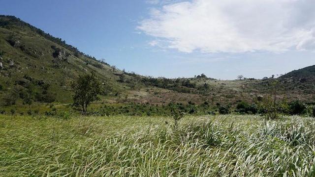 Bộ Công an điều tra khu đất được cấp cho nhiều người tại Nha Trang - Ảnh 1.