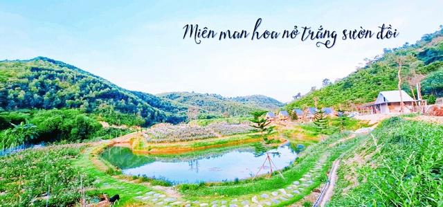 Mơ về ngôi nhà trên thảo nguyên, người phụ nữ chi gần 20 tỷ mua hơn 2ha đất làm farmstay - Ảnh 4.