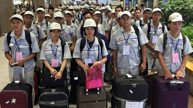 Nguy cơ Hàn Quốc dừng nhận lao động Việt Nam