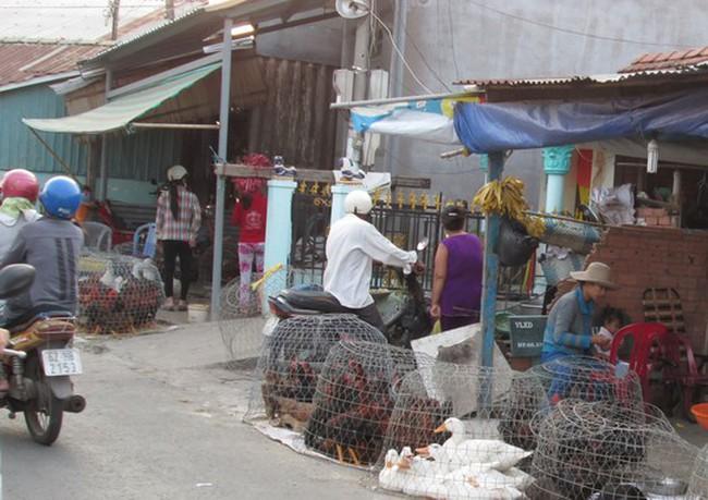 Trứng, thịt gà tăng giá