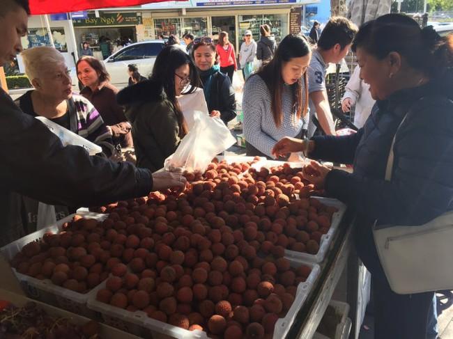 Hào hứng với trái vải Việt Nam tại Úc