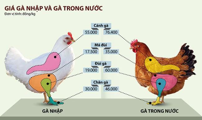 Gà Việt phát hoảng với đùi gà Mỹ chưa tới 20.000 đồng/kg