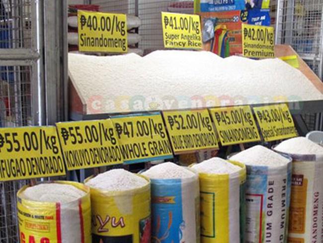 Philippines có kế hoạch tăng nhập khẩu gạo trong năm 2016