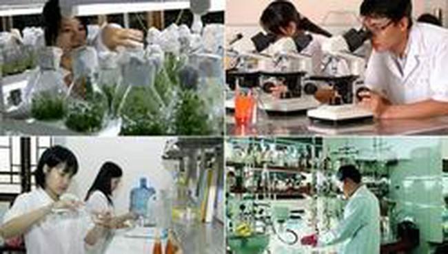 Tái cơ cấu ngành Khoa học và Công nghệ