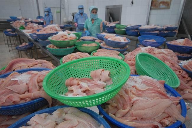 23 cơ sở cá tra đủ điều kiện XK sang Mỹ