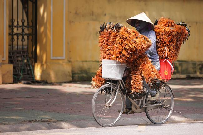 Bất chấp định giá cao, nhà đầu tư ngoại vẫn đặt cược vào TTCK Việt Nam