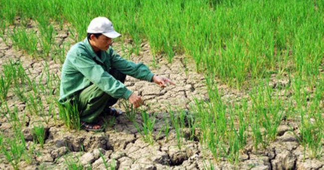 Tác động môi trường đe dọa tăng trưởng kinh tế