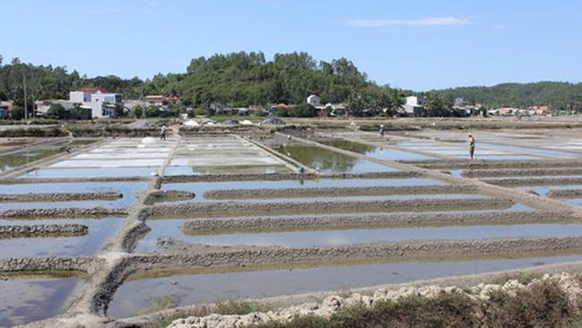 Hỗ trợ diêm dân tiêu thụ muối