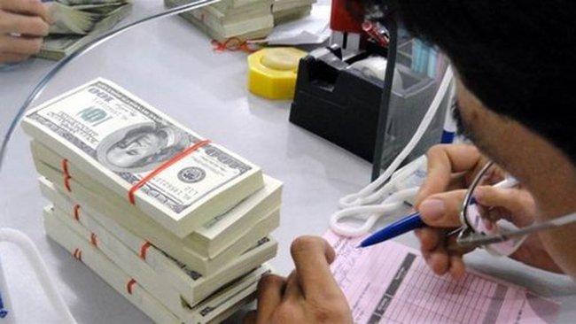 Phát hành trái phiếu ngoại tệ ở trong nước thì không chống đô la hóa được!
