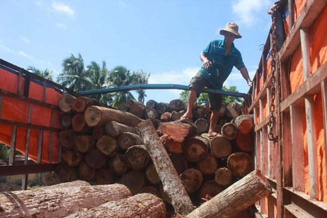 Có hay không việc tạo kẽ hở cho gỗ quý từ Campuchia vào Việt Nam?