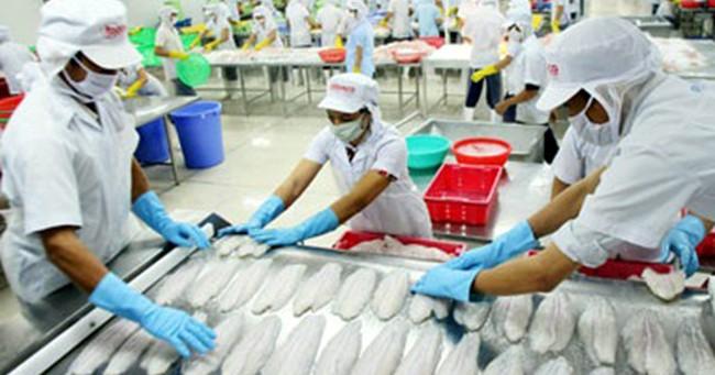 Kim ngạch xuất khẩu thủy sản 2016 đạt 7 tỷ USD