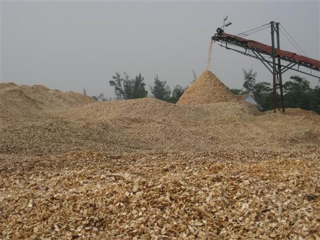 Xuất khẩu gỗ cả năm đạt 7,3 tỷ USD