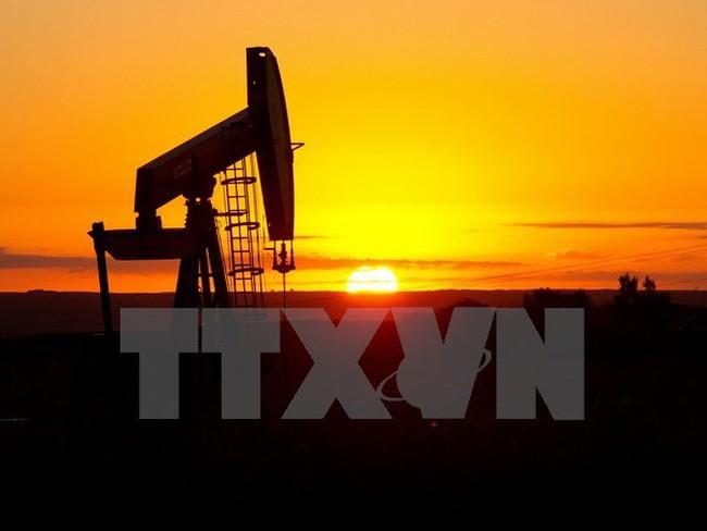 Giá dầu tăng nhờ tâm lý lạc quan về thỏa thuận cắt giảm sản lượng