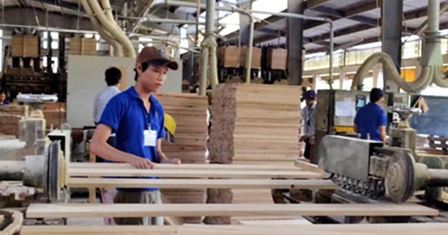 Trung Quốc tăng nhập khẩu gỗ nguyên liệu từ Việt Nam