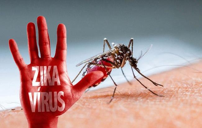 Đồng Nai họp khẩn vì virus Zika xuất hiện