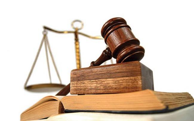 TVQH cho ý kiến về Bộ luật Hình sự và Luật PCTN