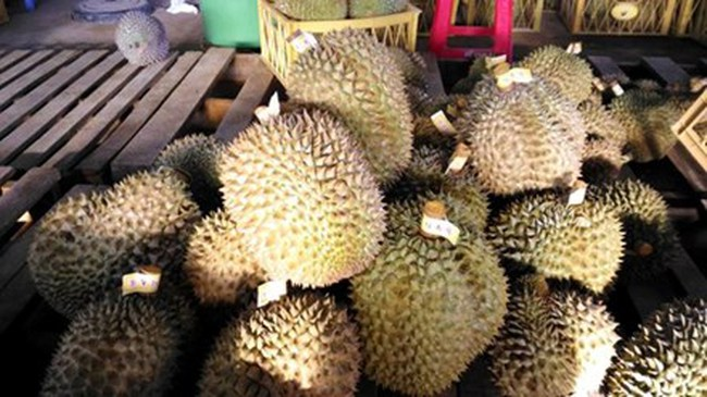 Thuốc thúc chín, bảo quản trái cây: Chưa được cấp phép