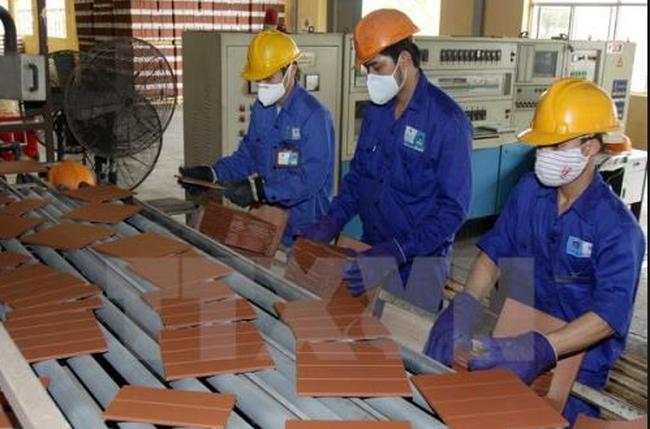 Viglacera Hạ Long: Dành phần lớn lợi nhuận đầu tư cho công ty con và Nhà máy mới