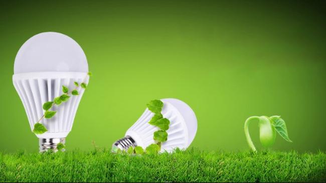Bóng đèn Điện Quang (DQC): Doanh thu bán hàng nội địa tăng, 9 tháng lãi 152 tỷ đồng