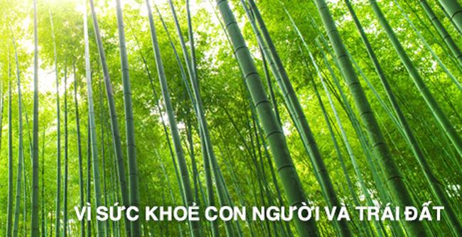 Cả Chủ tịch và Phó Chủ tịch Bamboo Capital cùng bán tổng 3,35 triệu cổ phiếu BCG
